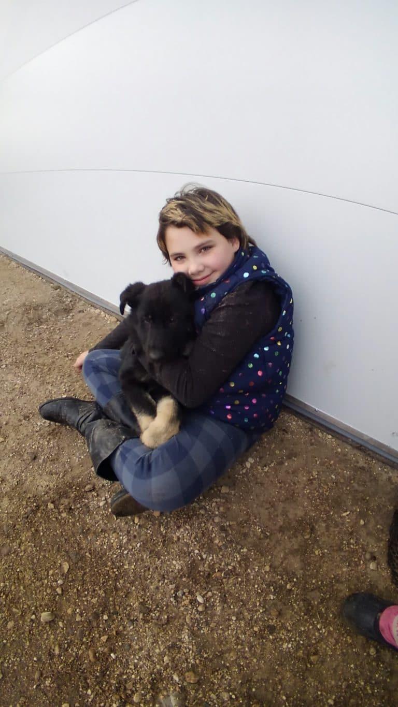 SmithFarms German Shepherds - Badger, MN 56714
